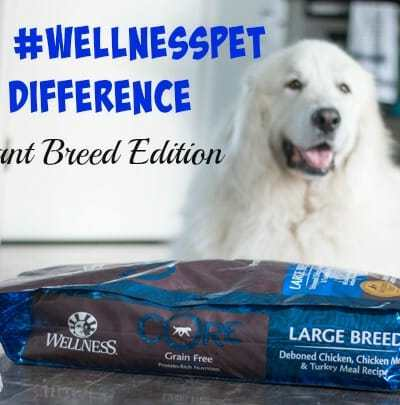 The #WellnessPet Difference – Giant Breed Edition