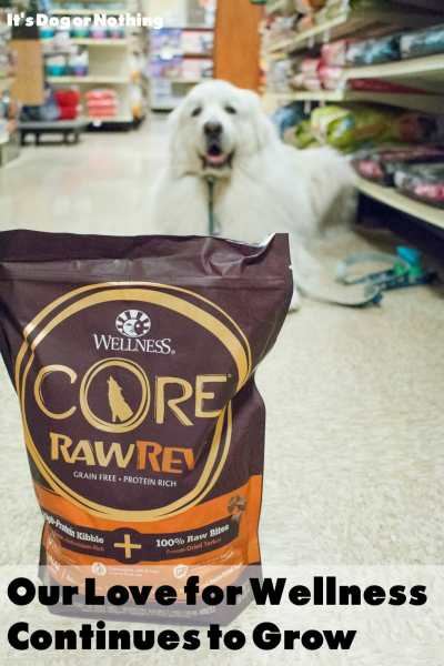 Want to include raw in your dog's diet. Wellness CORE RawRev makes it safe and easy to add the nutrition of raw to your dog's meals.