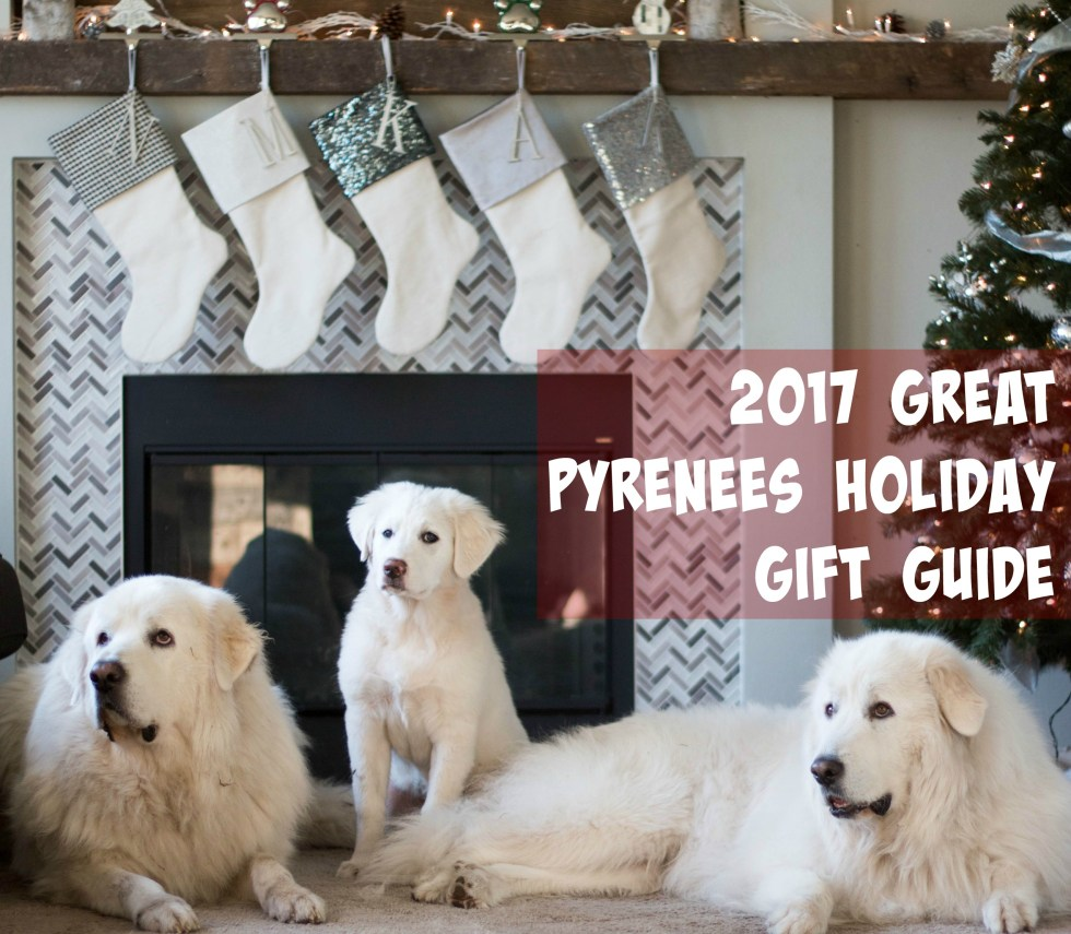 Still looking for a gift for your Great Pyrenees? Check out our 2017 Great Pyrenees holiday gift guide to find the perfect gift for your dog!