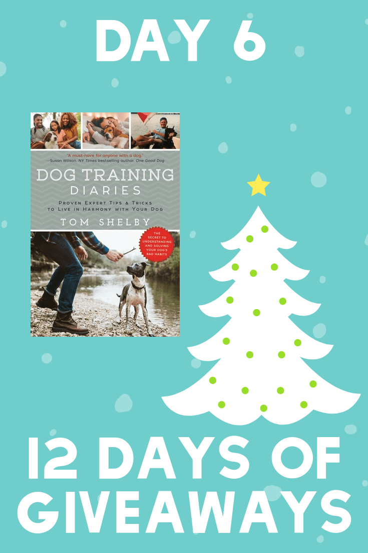 12 Days of Giveaways | Day 6