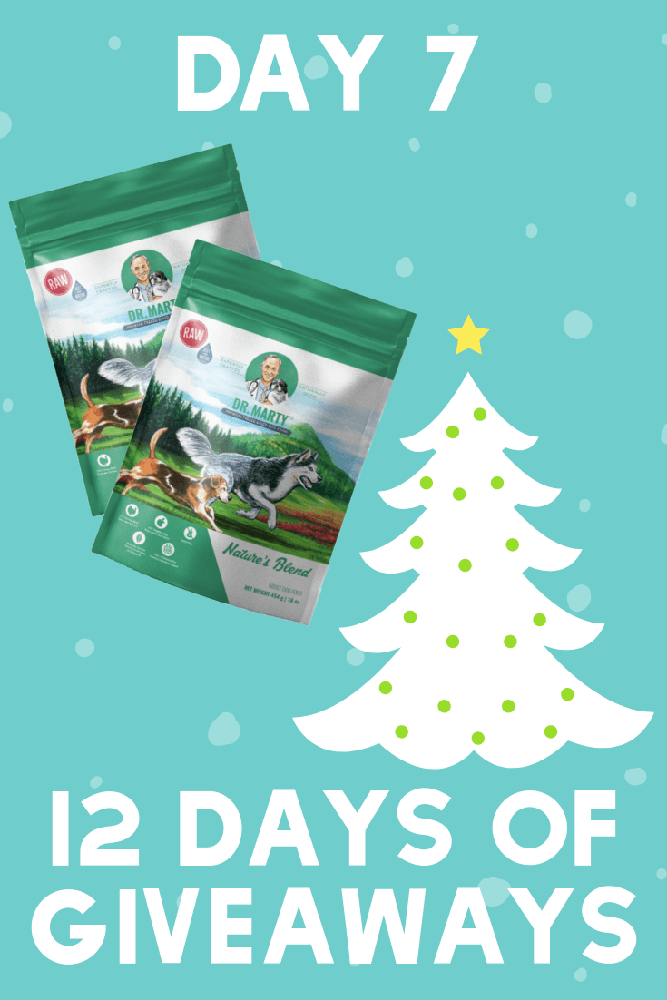 12 Days of Giveaways | Day 7