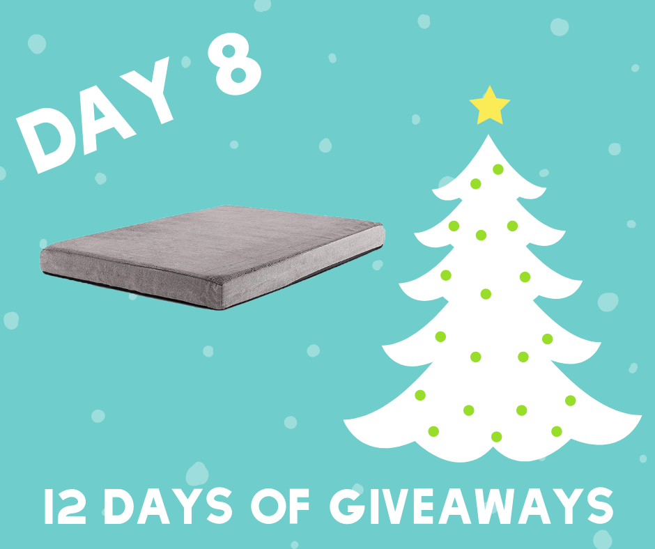 Does your dog need a new memory foam mattress? I'm pretty sure he does. Enter here to win a dog bed from Bark!