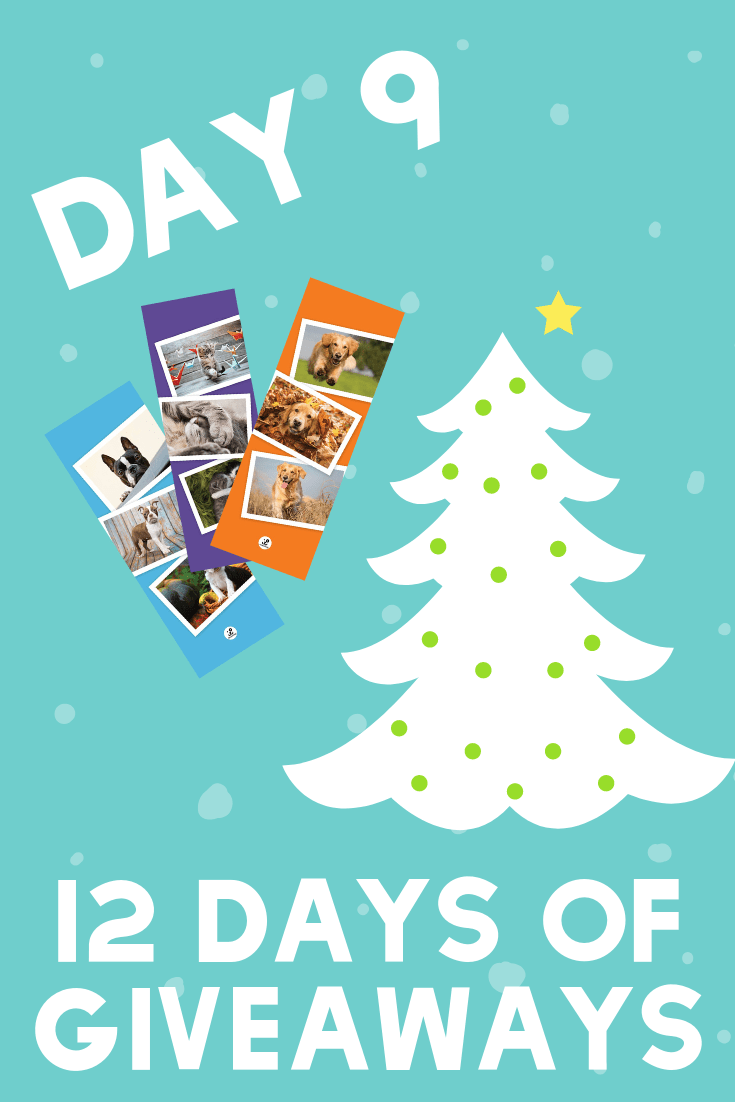 12 Days of Giveaways | Day 9