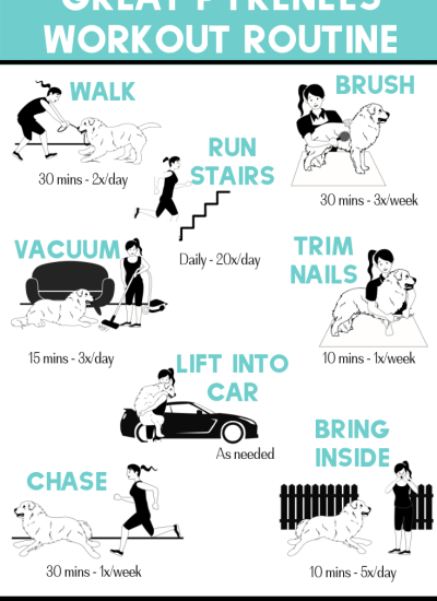8 Ways Your Great Pyrenees Helps You Get Fit