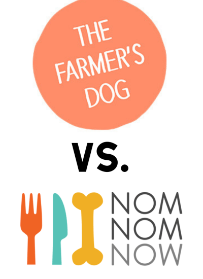 Interested in trying a pet food delivery service for homemade food, but not sure which is right for your dog? We've compared the top two subscription services, The Farmer's Dog and NomNomNow, to take the hassle out of your research. Plus, we have an exclusive offer!