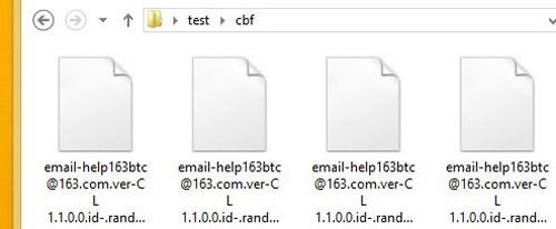 iizomer decrypted files