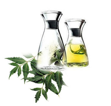 neem-oil-for hair spa at home