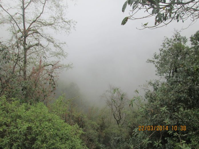fog covered valleys of Sikkim