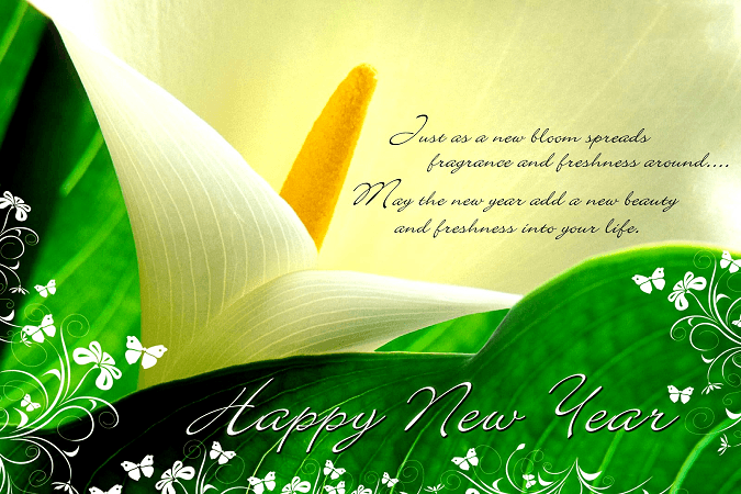 New Year HD SMS images 2016