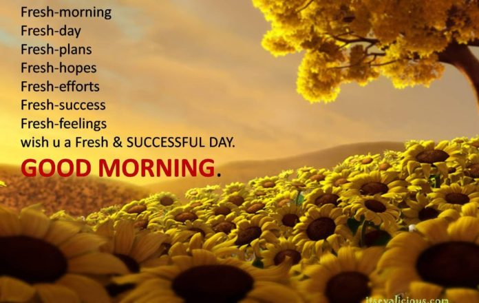 good_morning_hd_wallpaper download free