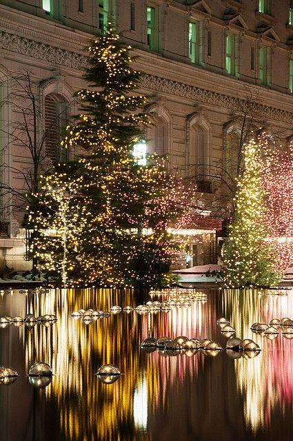 Outdoor lighting on Christmas trees