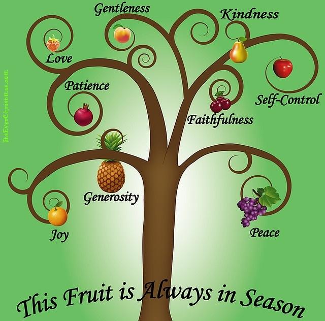 kindness-fruits-itseverchristmas_com-640px