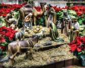 Nativity Scene statues beautiful