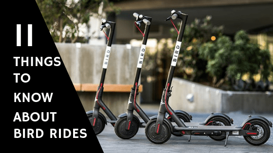 electric scooter sharing company