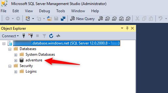 Seeing Database In Microsoft SQL Server Management Studio