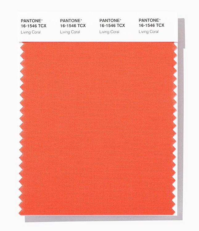 Living Coral - 2019 Color of the Year