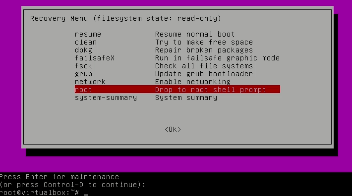 Root shell prompt allows you to reset password in Ubuntu