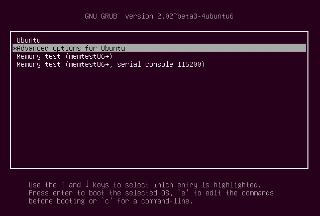 Advanced boot options in Grub menu of Ubuntu