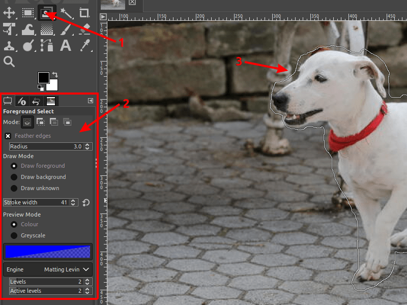 Select the foreground of the image in order to remove the background in GIMP