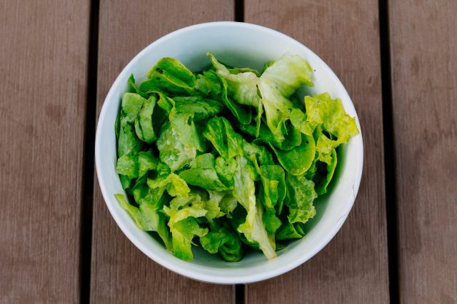 bowl of romaine lettuce, from growing romaine lettuce at home