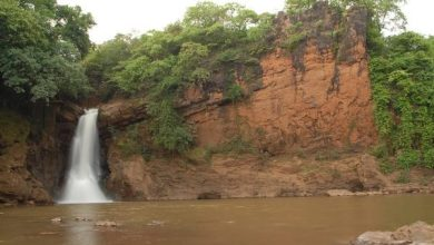 Photo of Arvalem Waterfall goes dry at the start of the summer in Goa