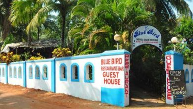 Photo of BLUE BIRD RESTAURANT & BAR