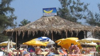 Photo of THE BIG BANANA BEACH SHACK
