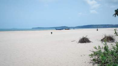 Photo of GOA! SIMPLY THE BEST!