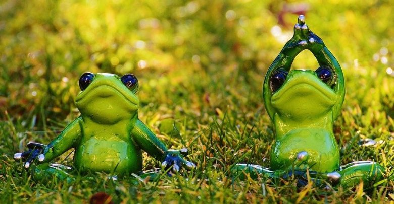 https://pixabay.com/en/frogs-yoga-meadow-fig-animal-1109775/