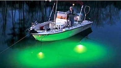 Photo of LED light fishing permitted beyond 12 nautical miles
