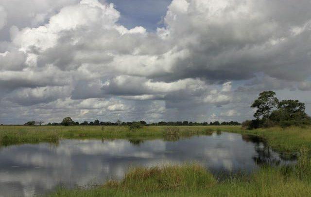 Goa state wetland authority