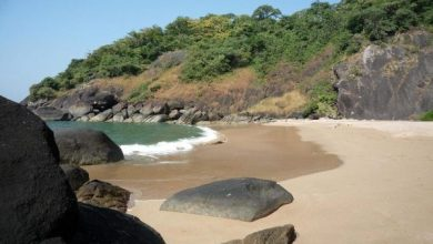 Photo of Butterfly Beach? A Beach in Goa