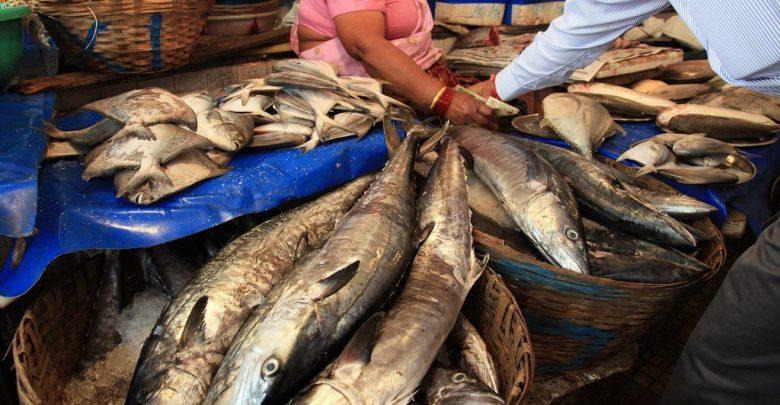 Fishing Ban Goa