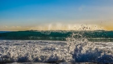 Photo of Rough waves crash down on North Goa beaches over the weekend