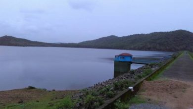 Photo of The Grand Dam(e)s of Goa part 3 – The Chapoli dam