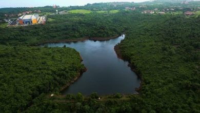 Photo of Bondvol lake in St. Cruz is over a 100 years old and now needs saving