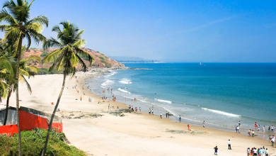 Photo of Is Goa Safe For Holidays Post-Covid? Yes It Is! But Do Follow Guidelines