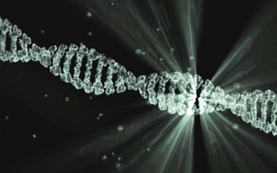 3 Guidelines to Follow When Collecting Forensic DNA