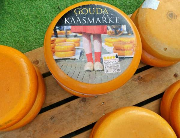 Cheese wheel, Gouda cheese market