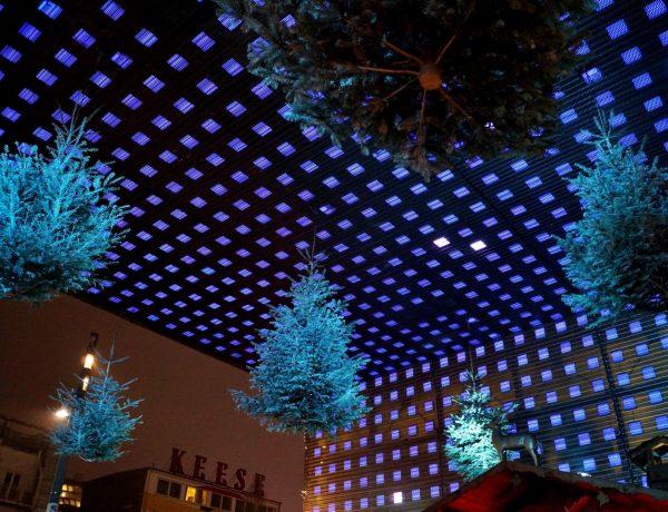 Hanging Christmas trees at Reeperbahn christmas market