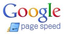 Google PageSpeed logo
