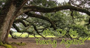 Young-Again