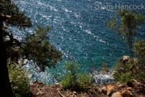 Mediterranean, Lokrum, Dubrovnik, Croatia