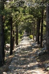 Lokrum Path