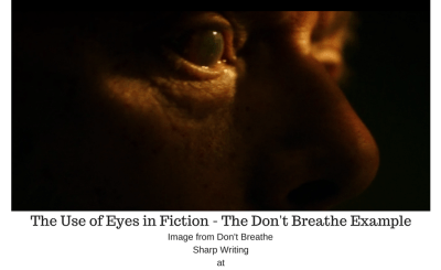 The Use of Eyes in Fiction - The Don't Breathe Example
