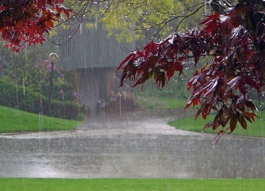 romantic-rainy-season-picture-2012-2013