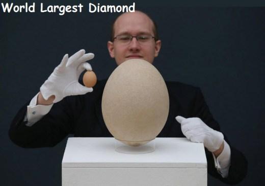 world-largest-diamond-picture-2013 2014