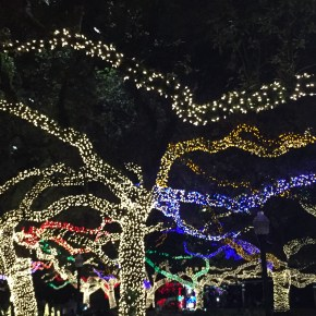7+ Places for Houston Christmas Lights