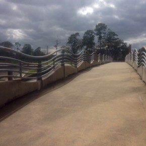 Exploring the White Oak Bayou Trail