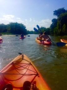 Kayaking the Armand Bayou Houston